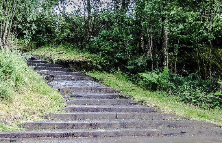 Path ahead,steps