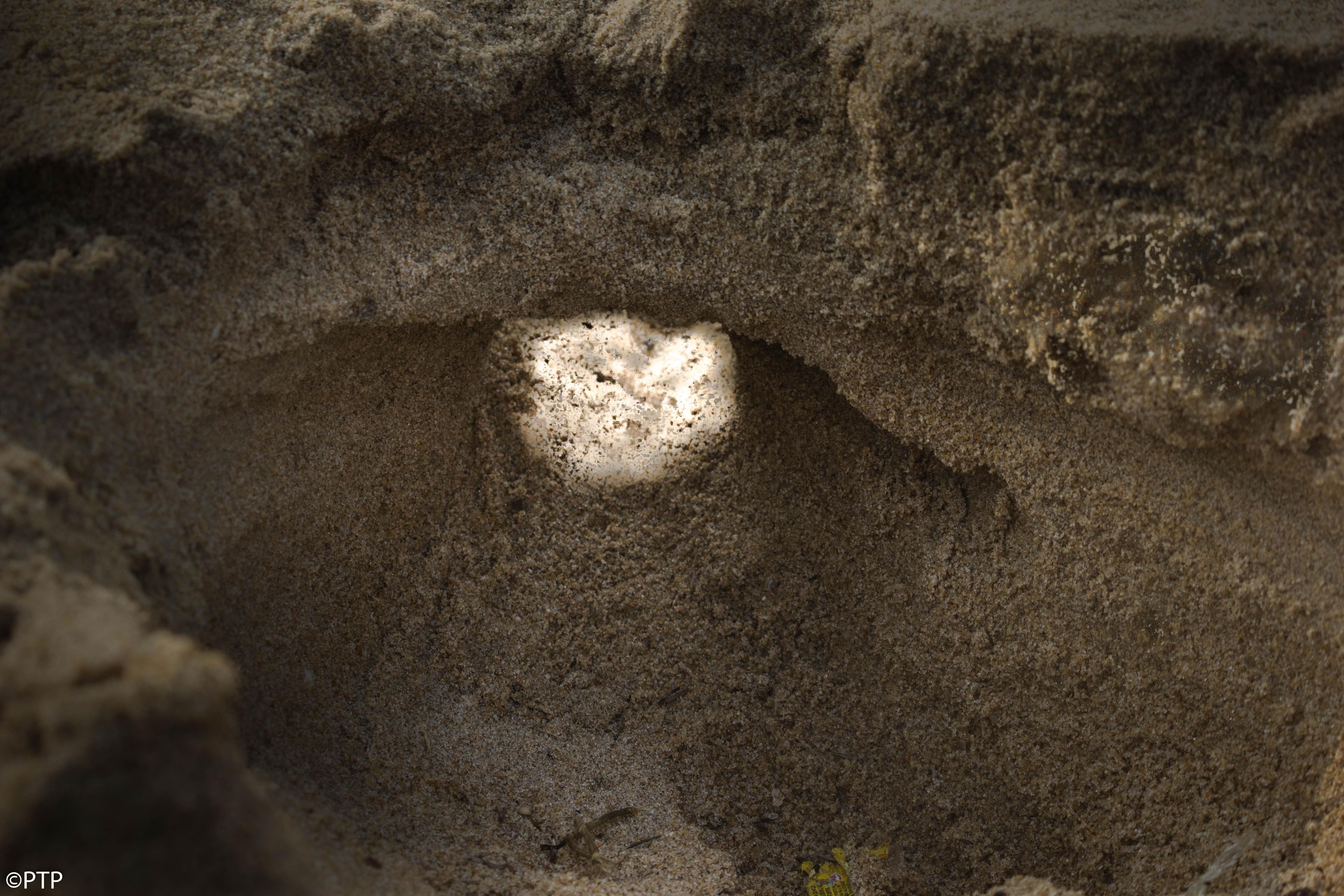 Sand tunnel