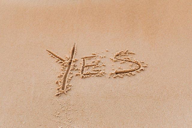 web-yes